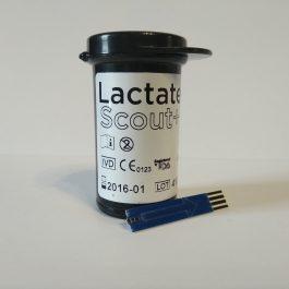 Lactate scout+ sensors